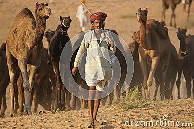Indian Camel Fair Editorial Photography
