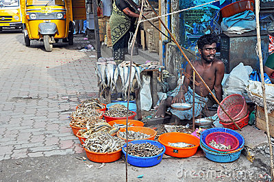 Indian Fish Seller Editorial Photo