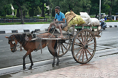 Indian horse cart in the environmental initiative. Editorial Stock Image