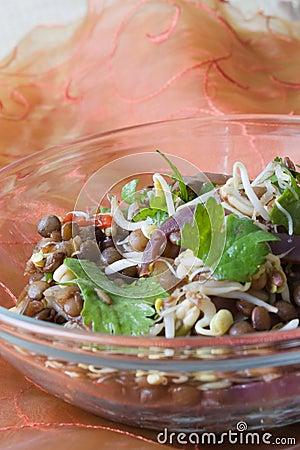 Free Indian Lentil Salad Stock Photos - 12059603