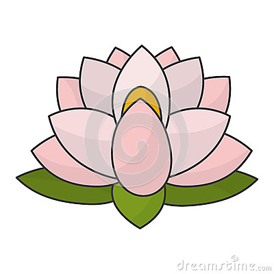 indian lotus flower stock vector  image, Beautiful flower