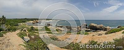 tropic sea shore