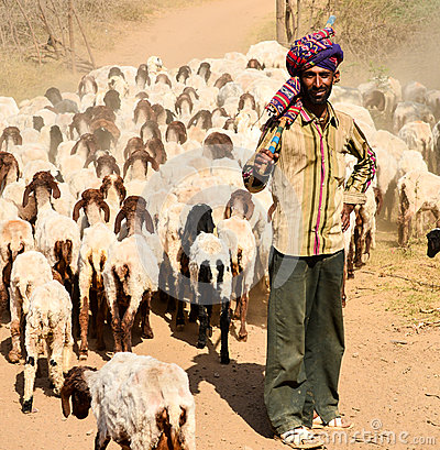 Free Indian Shepherd Royalty Free Stock Photos - 54757138