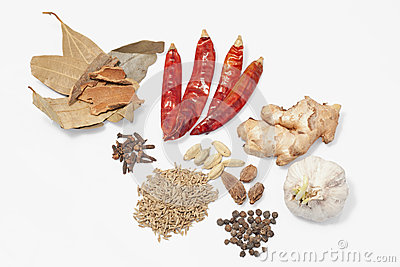 Indian spice items