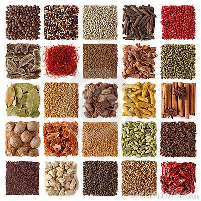 Free Indian Spices Collection Stock Images - 16319494