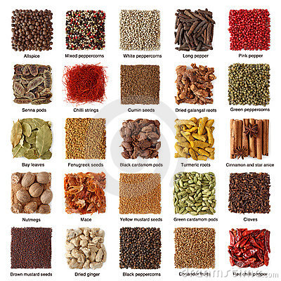 Free Indian Spices Collection Stock Photos - 16631183