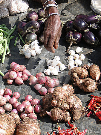 Indian villagers sell eggplant