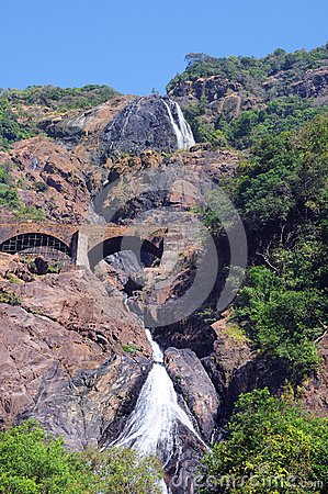 Indian waterfall Dudhsagar in jungle forest