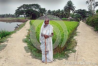 Indian widow. Editorial Stock Photo