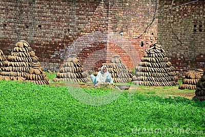 Indian village woman Editorial Stock Photo