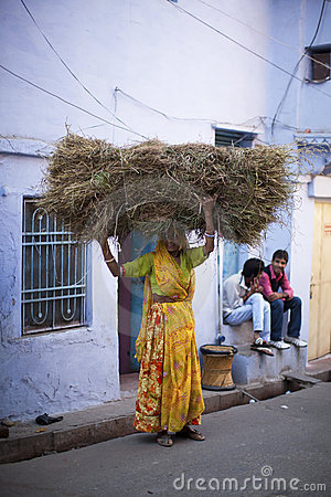 Indian woman in sari carrying twigs on her head Editorial Stock Image