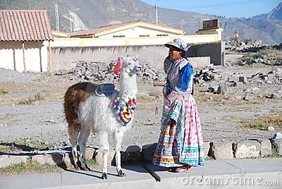 Indigence Peruvian woman with lama Editorial Image
