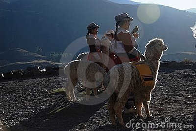 Indigence Peruvian women with lamas Editorial Image