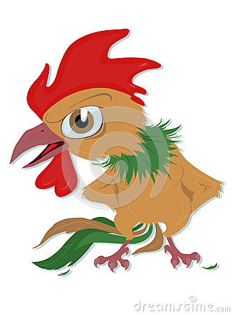 Indignant rooster