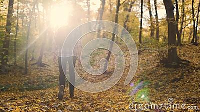 Indivíduo que entra na floresta decíduo do outono estar sozinho e admirar a natureza, solidão video estoque