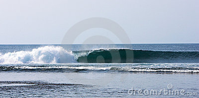 Indo Wave