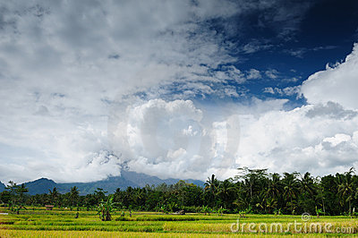 Indonesia - rural landscape