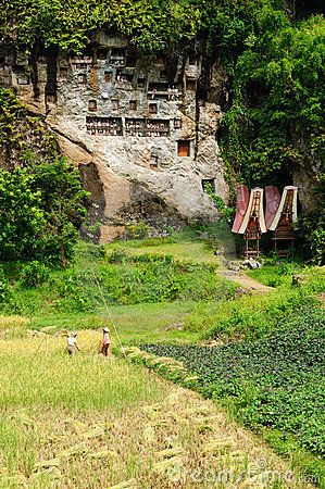Indonesia, Sulawesi, Tana Toraja, Ancient tomb