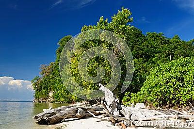 Indonesia, Sulawesi. Togean islands