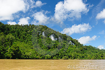Indonesia - Tropical jungle on the river, Borneo