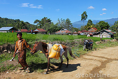 Indonesian village Editorial Image