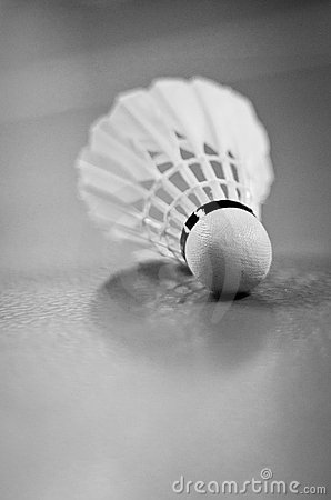 Indoor Badminton Shuttlecock Racquet Ball Game