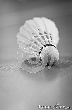 Indoor Badminton Shuttlecock Racquet Ball Game
