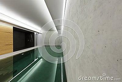 Indoor pool with sauna