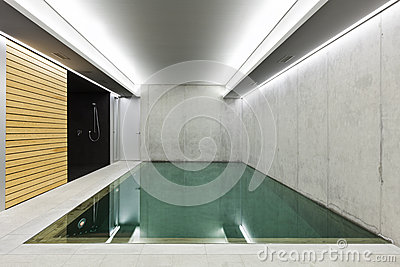 Indoor pool with sauna