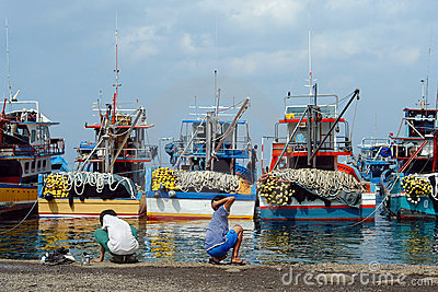Industrial Asian fishing port.