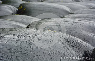 Industrial bags for agriculture Stock Photo