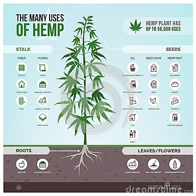 Free Industrial Hemp Uses And Products Royalty Free Stock Photos - 114334078