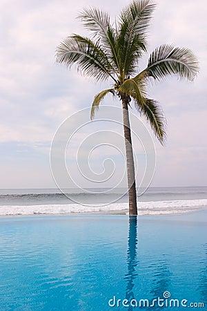 Infinity Pool - Mexico