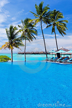 Infinity pool with umbrellas and palm trees