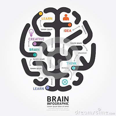 Free Infographics Vector Brain Design Diagram Line Style. Royalty Free Stock Photo - 41201835