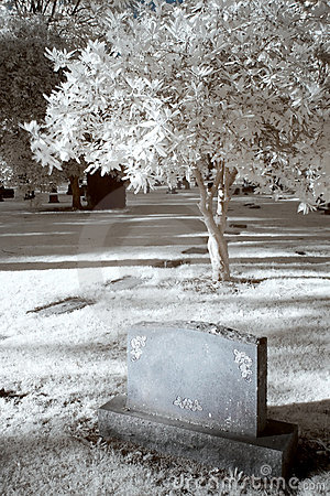 Free Infrared Cemetary Stock Image - 5837261