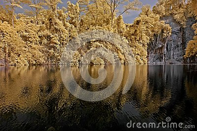 Infrared photo – lake, rock, and tree in the par