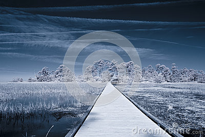 Infrared shot of path over water