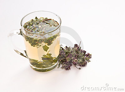 Infusion of  oregano