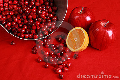 Ingredients for cranberry relish or sauce