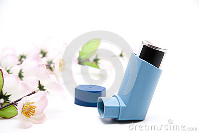 Inhaler for spray