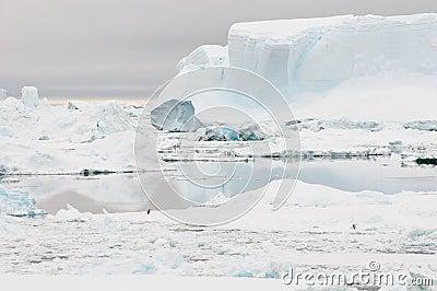 Inhospitable Antarctica