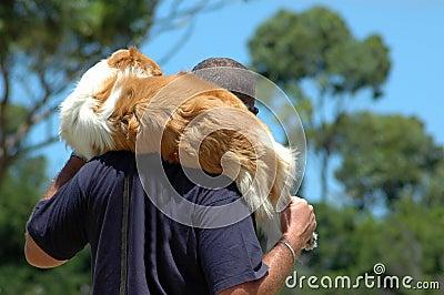 Injured dog backpack