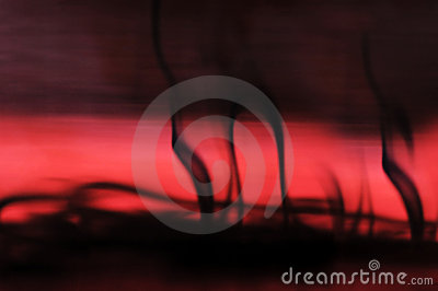 Ink in red water blur