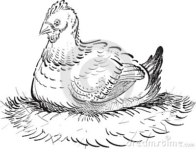 Inked Chicken