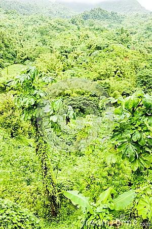 Inland of Grenada