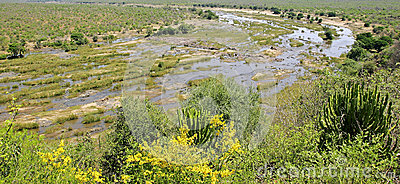 Inland landscape