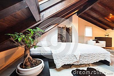 Innen-, schöner Dachboden