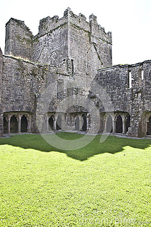 Inner Courtyard at Bective Abbey