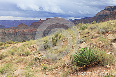 Inner Grand Canyon